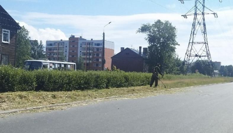 «ТехРент» наказали рублем за высокую траву вдоль дорог